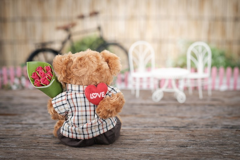 brown bear plush toy holding red rose flower valentine image