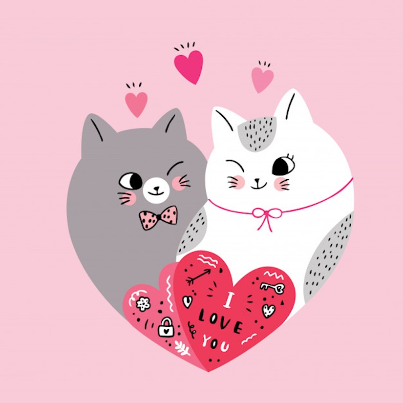 cartoon cute valentines day couple cats shape heart vector image
