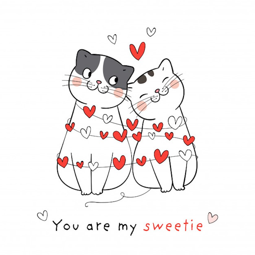 draw couple love cat with little heart valentines day image