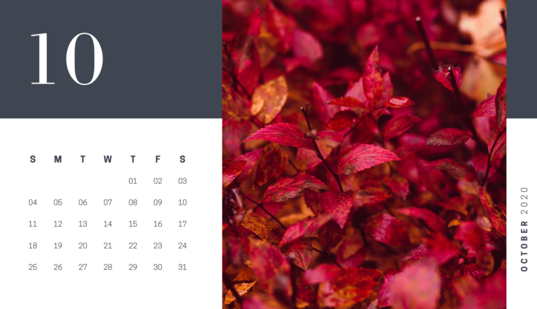 28 october 2020 calendar photography free printable
