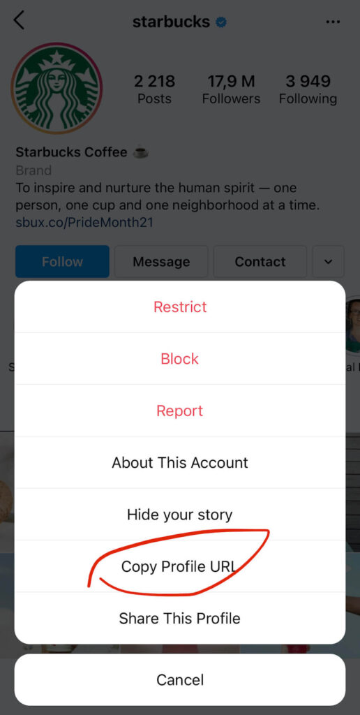 how to get a link to instagram profile